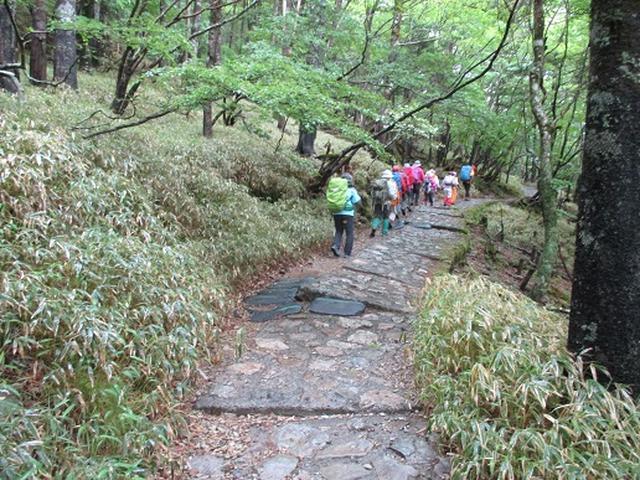 画像2: 【山旅会】大台ヶ原