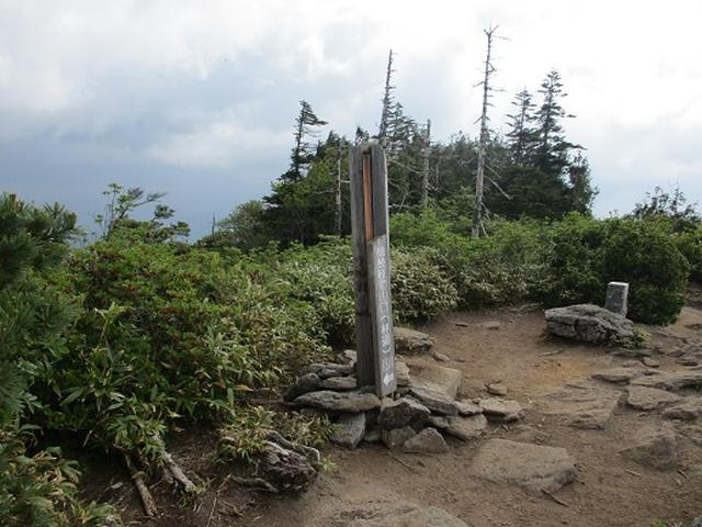 画像4: 【山旅会】帝釈山と田代山