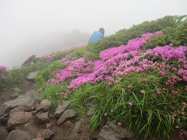 画像7: 【山旅会】九重山 その2