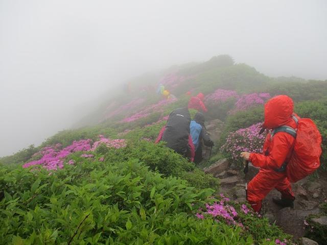 画像8: 【山旅会】九重山 その2