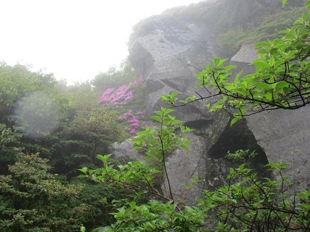 画像5: 【山旅会】九重山 その2