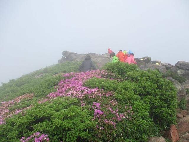 画像4: 【山旅会】九重山 その3