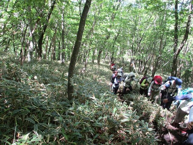 画像4: 【山旅会】赤城地蔵岳