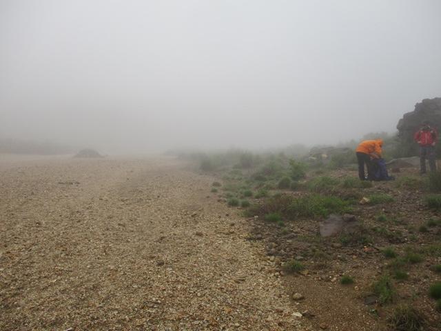画像2: 【山旅会】九重山 その3