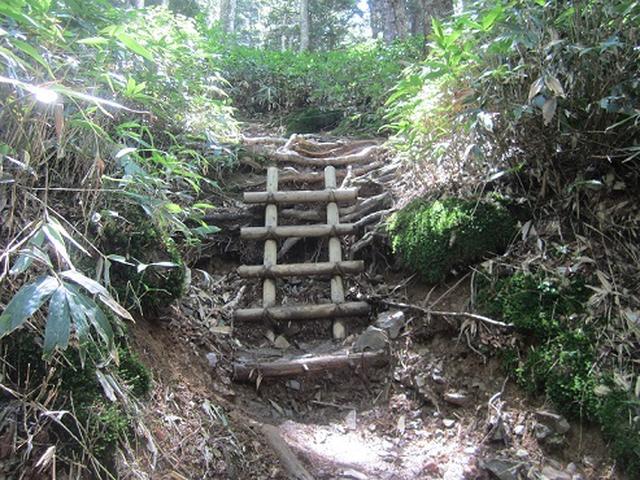 画像4: 【山旅会】蝶ヶ岳ツアーのご案内