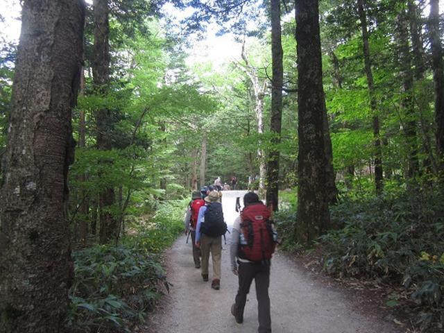 画像1: 【山旅会】蝶ヶ岳ツアーのご案内