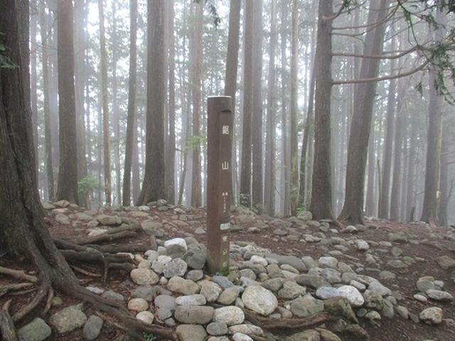 画像6: 【山旅会】鋸山から大岳山 下見報告