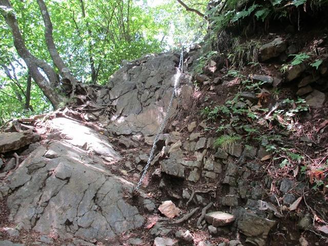 画像11: 【山旅会】鋸山から大岳山 下見報告