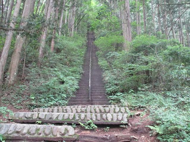 画像2: 【山旅会】鋸山から大岳山 下見報告