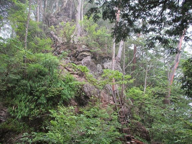 画像5: 【山旅会】鋸山から大岳山 下見報告