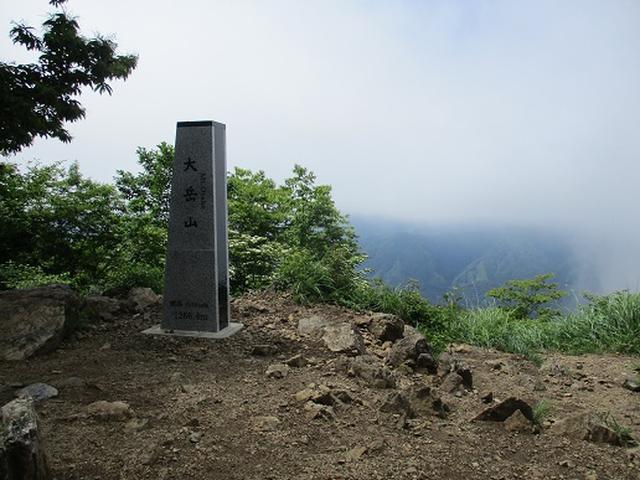 画像9: 【山旅会】鋸山から大岳山 下見報告