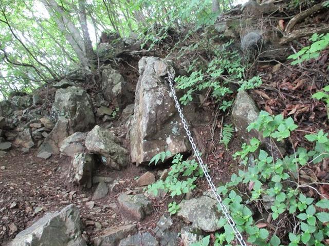 画像8: 【山旅会】鋸山から大岳山 下見報告