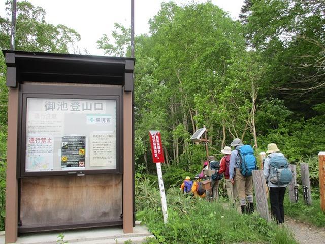 画像2: 【山旅会】尾瀬・上田代ハイキング 添乗報告