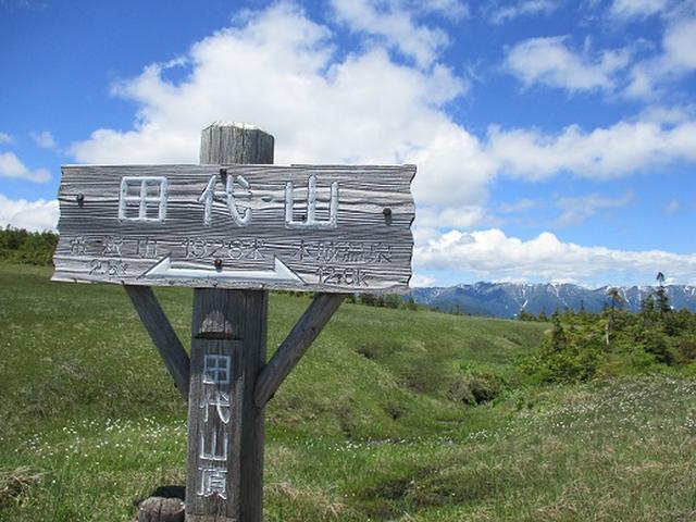画像14: 【山旅会】帝釈山から田代山 添乗報告