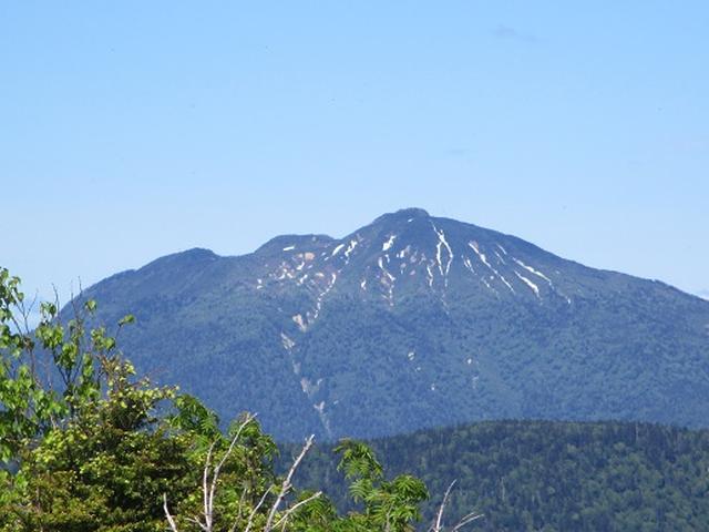 画像6: 【山旅会】帝釈山から田代山 添乗報告