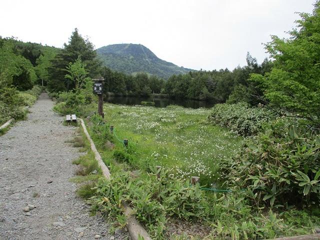 画像2: 【山旅会】志賀山の下見に行ってきました!