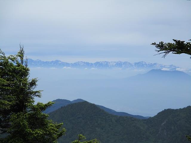 画像9: 【山旅会】志賀山の下見に行ってきました!