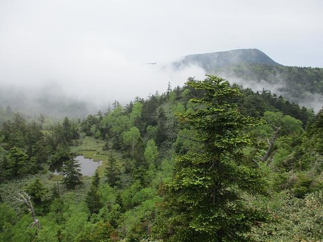 画像11: 【山旅会】志賀山の下見に行ってきました!