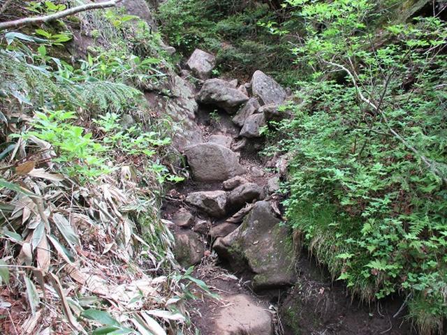 画像6: 【山旅会】志賀山の下見に行ってきました!