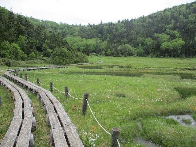 画像13: 【山旅会】志賀山の下見に行ってきました!