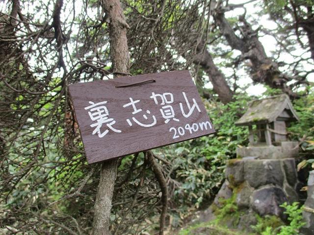 画像12: 【山旅会】志賀山の下見に行ってきました!