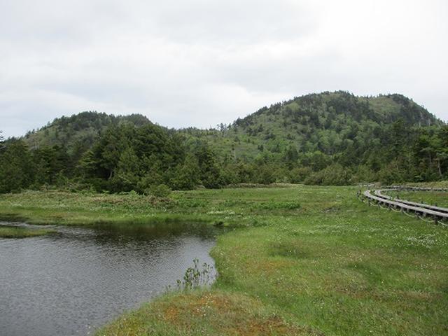 画像14: 【山旅会】志賀山の下見に行ってきました!