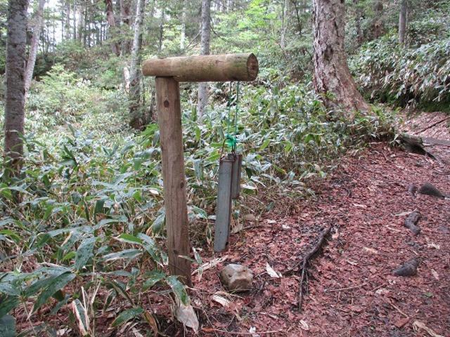 画像4: 【山旅会】志賀山の下見に行ってきました!
