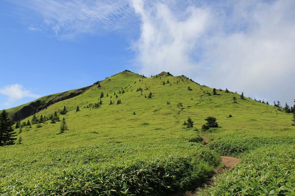 画像: <山旅会>『登山初級B 夏の高山植物咲く 志賀山と根子岳』|クラブツーリズム