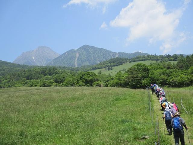 画像6: 【山旅会】天女山から美し森 添乗報告
