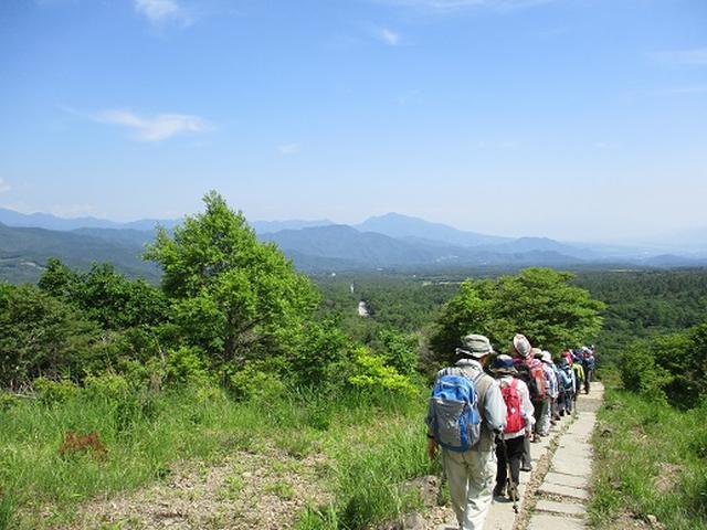画像15: 【山旅会】天女山から美し森 添乗報告
