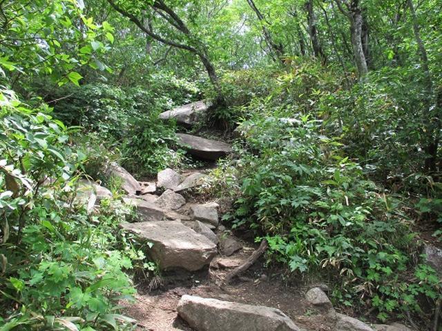 画像6: 【山旅会】姫神山へ下見に行ってきました!