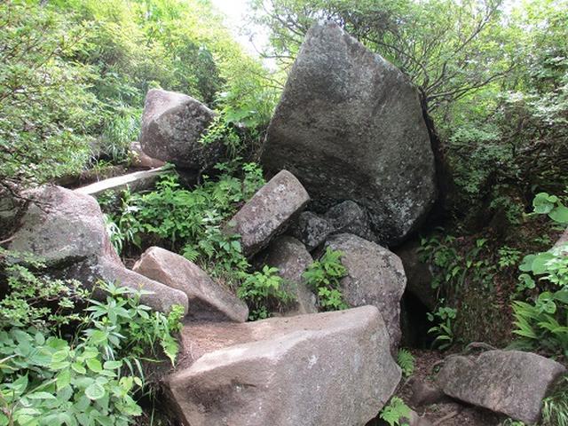 画像7: 【山旅会】姫神山へ下見に行ってきました!