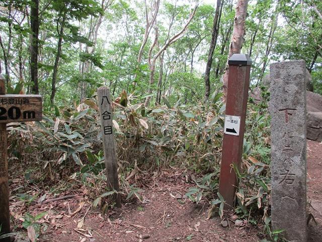 画像5: 【山旅会】姫神山へ下見に行ってきました!