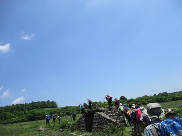 画像4: 【山旅会】天女山から美し森 添乗報告