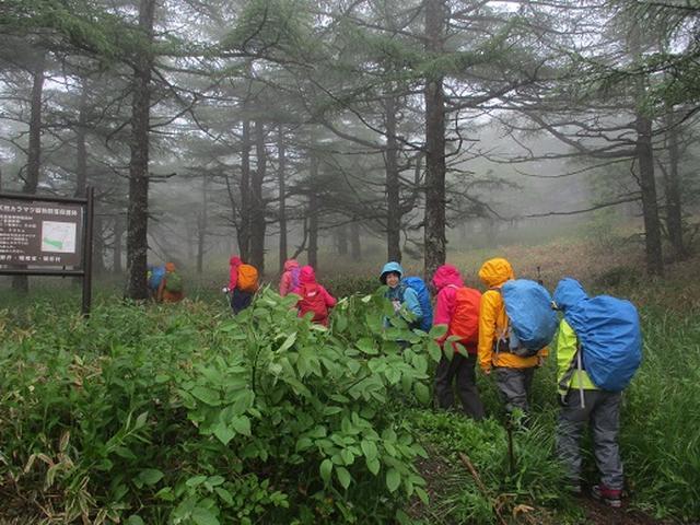 画像1: 【山旅会】黒斑山 ツアー実施報告
