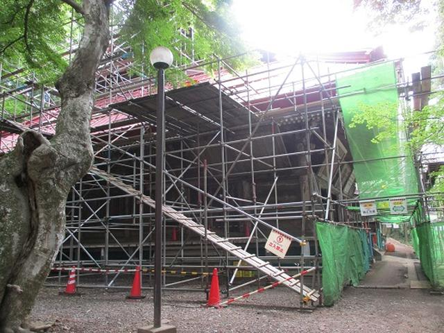 画像6: 【山旅会】関八州見晴台へ下見に行ってきました!