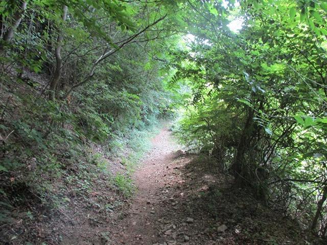 画像8: 【山旅会】関八州見晴台へ下見に行ってきました!
