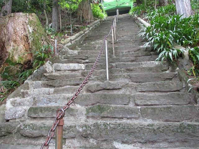 画像5: 【山旅会】関八州見晴台へ下見に行ってきました!