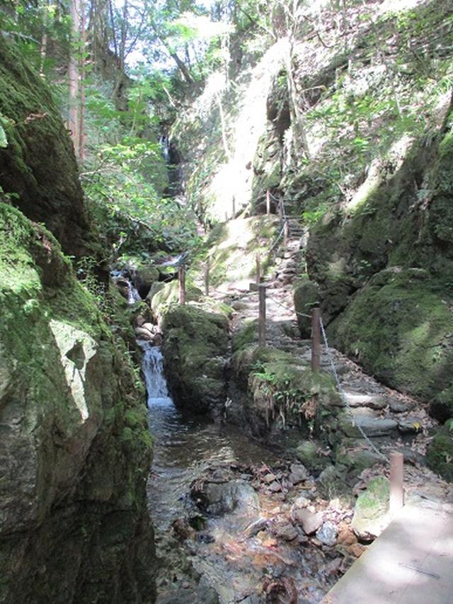 画像10: 【山旅会】関八州見晴台へ下見に行ってきました!