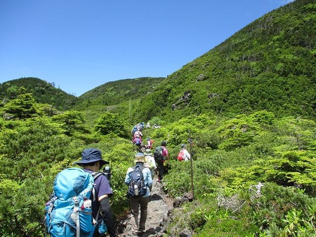 画像2: 【山旅会】晴天の北横岳に無事登頂!