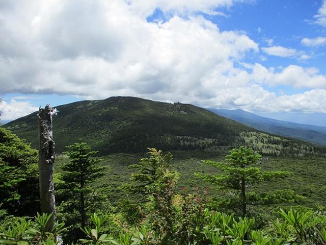 画像3: 【山旅会】晴天の北横岳に無事登頂!
