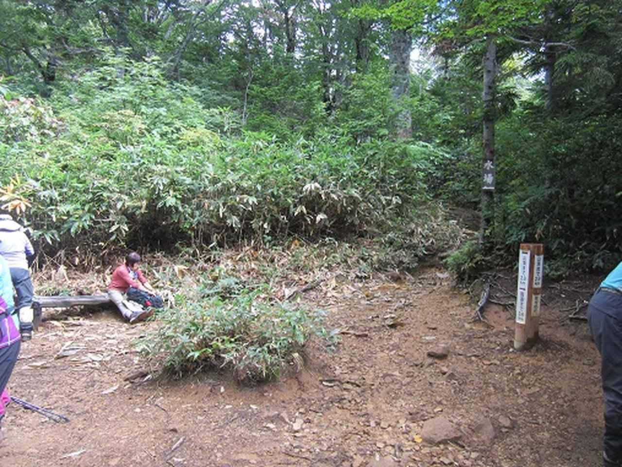 画像3: 【山旅会】9月の山旅会「会津駒ヶ岳」のご案内