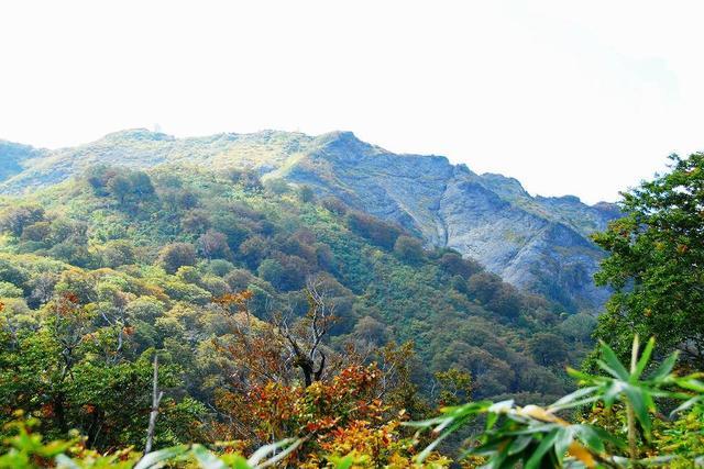 画像: <山旅会>『登山中級A 黄葉のブナ林の登山道 ゆったり会津駒ヶ岳 2日間』【上野出発】|クラブツーリズム