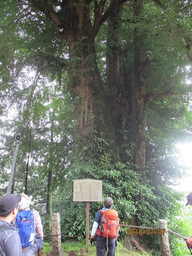 画像2: 【山旅会】関八州見晴台ツアーにいってまいりました