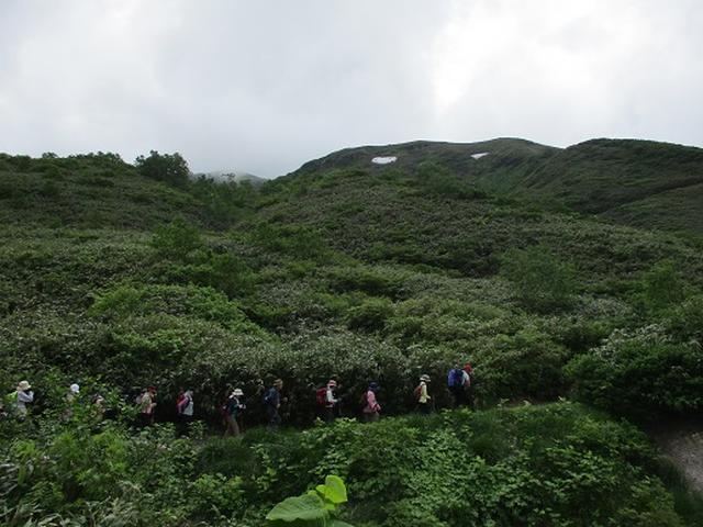 画像3: 【山旅会】秋田駒ヶ岳にいってまいりました!(その1)