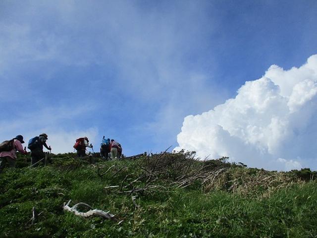画像2: 【山旅会】秋田駒ヶ岳ツアーにいってまいりました!(その2)