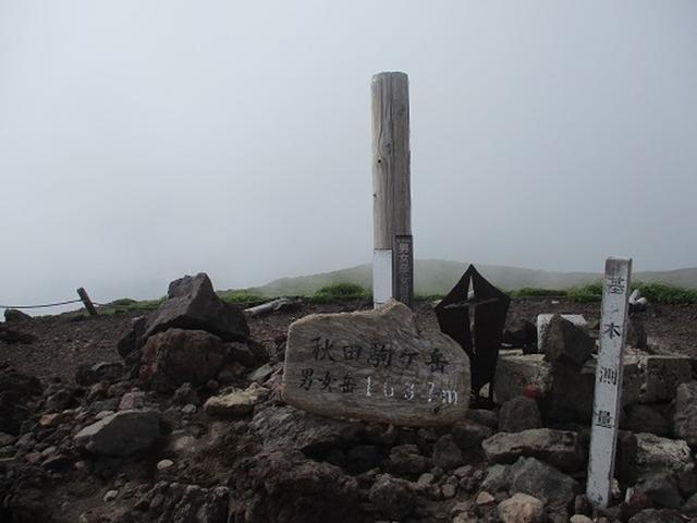 画像4: 【山旅会】秋田駒ヶ岳ツアーにいってまいりました!(その2)