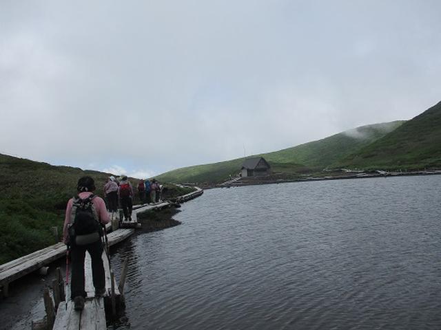 画像8: 【山旅会】秋田駒ヶ岳にいってまいりました!(その1)