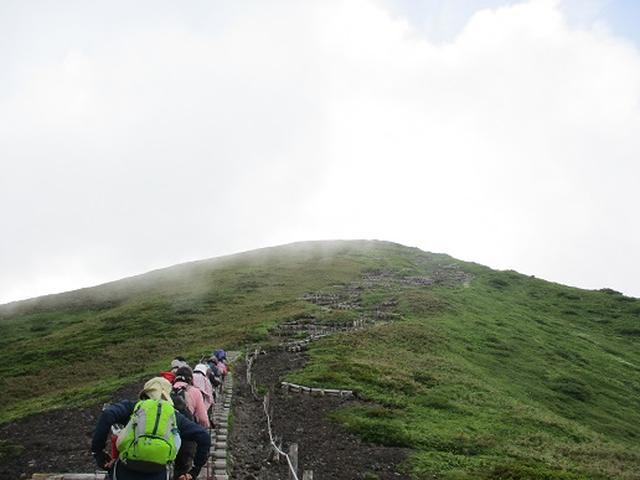 画像1: 【山旅会】秋田駒ヶ岳ツアーにいってまいりました!(その2)
