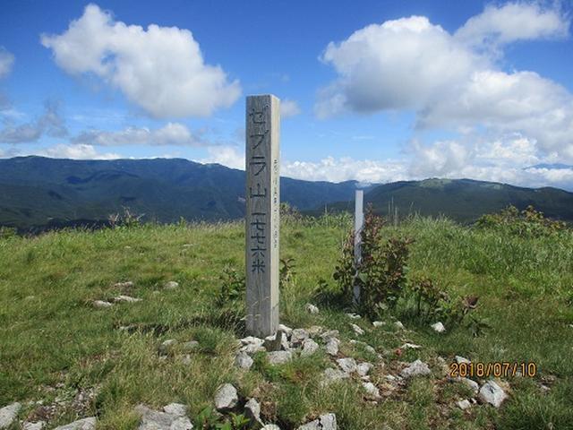 画像11: 【山旅会】霧ヶ峰・男女倉山の下見にいってまいりました!